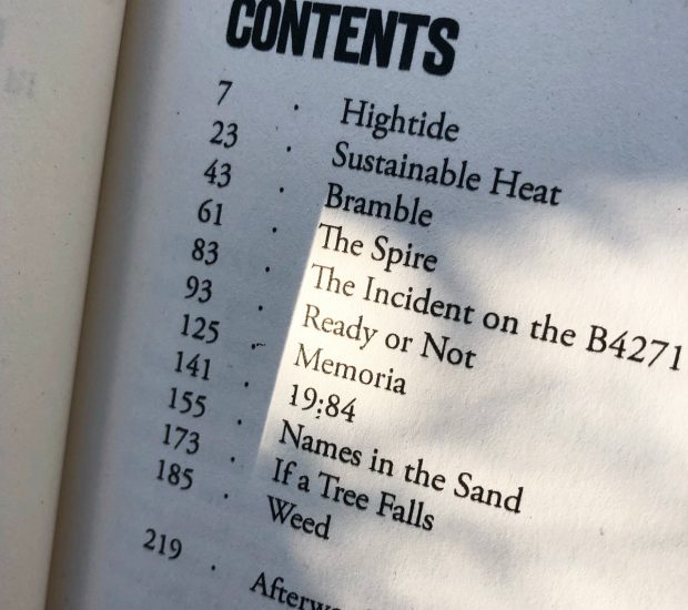 Silverback - contents page